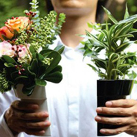 Jardiner : un excellent moyen de garder la forme
