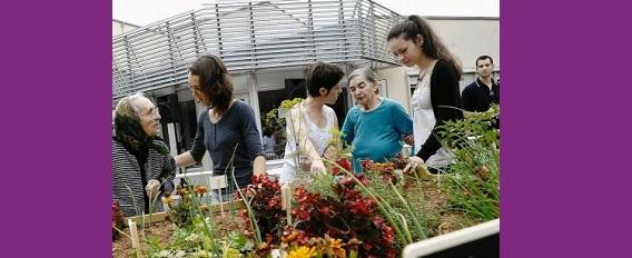 Qu'est ce que « les jardins thérapeutiques » ?