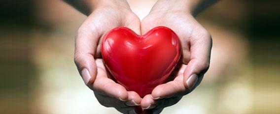 Le don d'organes : ce qui change en 2017